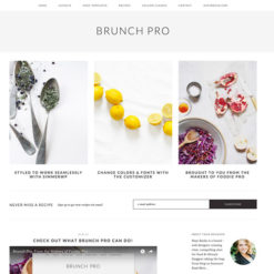 StudioPress Brunch Pro Genesis WordPress Theme