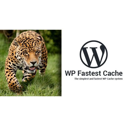 WP Fastest Cache WordPress Plugin – Premium