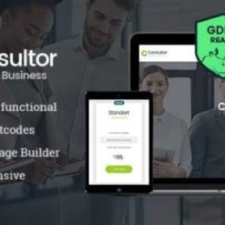 Consultor | A Business Financial Advisor WordPress Theme