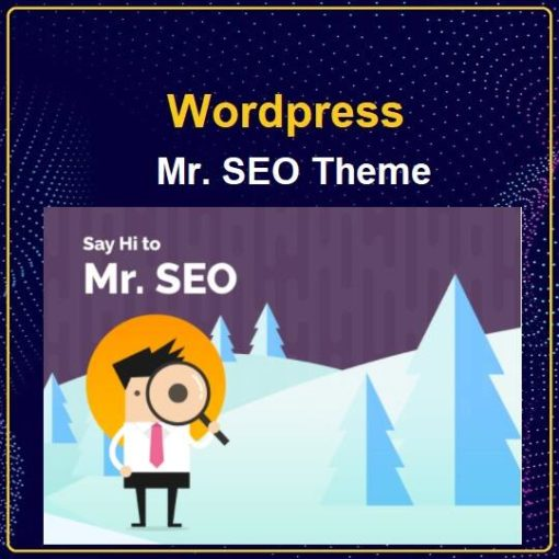 Mr. SEO - Social Media Marketing Agency Theme